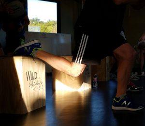 WBF Box